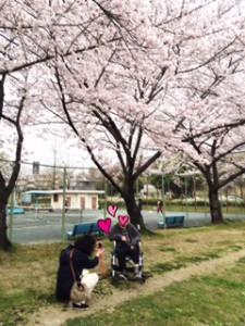 住宅型有料老人ホームとまり樹鹿山 お花見